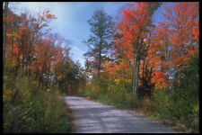341098 Narrows Road Lake Of Bays Haliburton Ontario A4 Photo Print