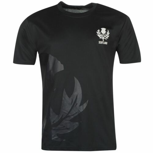 Scotland Rugby Polyester T-Shirt Mens Blue Activewear Athleisure Top Tee Small