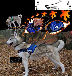 Blue-Dog-Harness-S-M-L-XL-padded-extra-Siberian-Husky-Malamute-Staffordshire