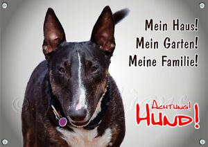 Bouclier de chien avec Bull Terrier - Bouclier en métal de qualité supérieure