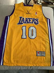Mitchell & Ness NBA Los Angeles Lakers Steve Nash #10 Basketball ...