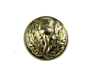 Button-Thistle-Gold-19mm-Medium-Pack-of-6-R1499