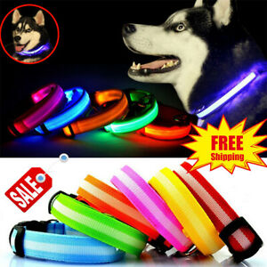 USB-Rechargeable-LED-Dog-Collar-Nylon-Glow-Flashing-Light-Up-Safety-Pet-Collars