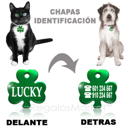 Chapa identificación//Placa identificacion collar gato y perro en forma de trébol