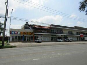 Rento local comercial en Av. Concepción en Real del Valle