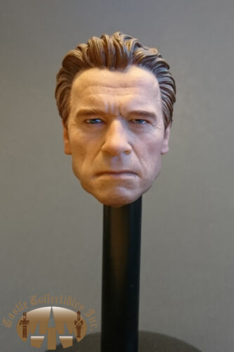 "DAM Dragon not hot toys Custom Old Arnold Normal Head for 12/"" Phicen Figure"