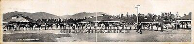 1908 Welch horses at Santa Anita Park CA Vintage Panoramic Photo Horse Racing