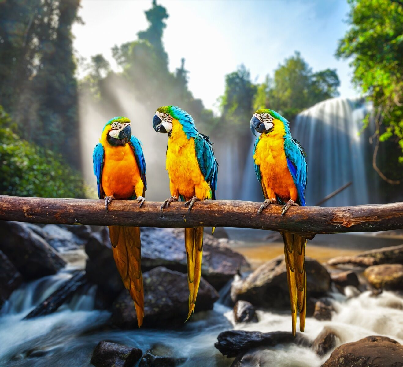 3D Waterfall Birds 101 WallPaper Murals Wall Print Decal Wall Deco AJ WALLPAPER