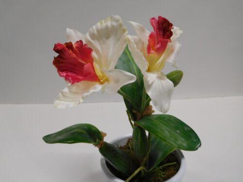Orchidee Cattleya Kunstpflanze Dekopflanze 30 cm weiß pink getopft 14294-05 F73
