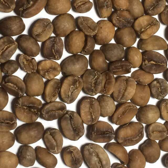 Decaf Colombian 5 Lbs Unroasted Green Coffee Beans For Sale Online