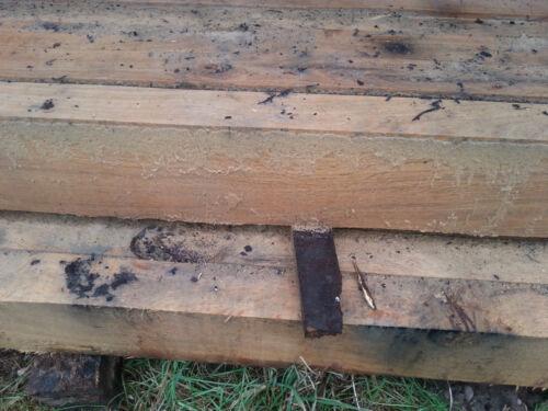 Eichenbalken 8 x 18 Kanthölzer aus Eiche Kantholz 8x18 4m lang