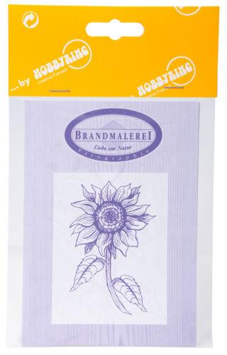 Blumenmotive Vorlagenbogen für Brandmalerei Zeichenvorlage DIN-A3 doppelseitig