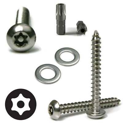 Flat Head Fasteners Nuts Black Caps Stainless Steel Mounting Hardware Kit- #10 Metric M5 Machine Screws Rust Proof Anti Theft License Plate Screws- Tamper Proof Security Car Tag Lock Bolts Set