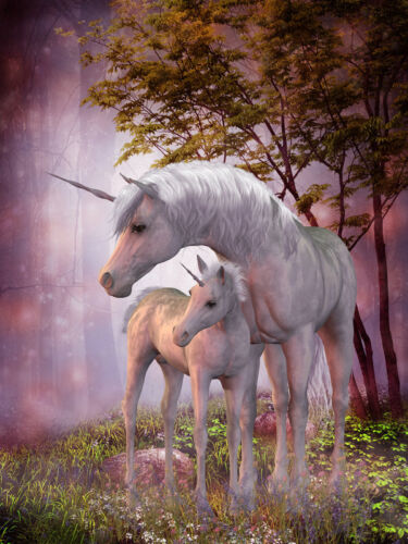 Art wall Home decor oil painting Animal horse unicorn picture Printed Canvas N68