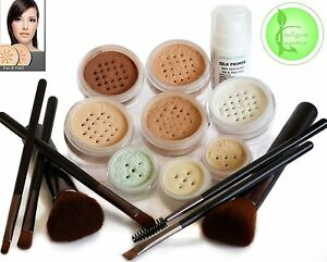 Intelligent-Cosmetics-Mineral-Makeup-16-Piece-Set-Bare-Pure-Mineral-Foundation