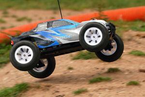 FTX-Gemetzel-1-10-gebaut-RC-Auto-2-4Ghz-Truggy-4WD-Schnelle-Wasserdicht-mit-Fledermaus-gebuerstet