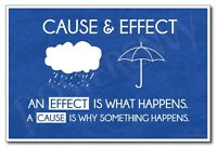 Cause & Effect - Classroom Science Poster