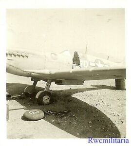 Org-Photo-US-52nd-Fighter-Group-Spitfire-Fighter-Plane-034-8-BALL-034-North-Africa