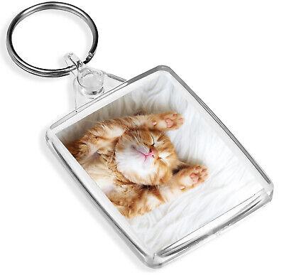Beautiful Cats Face Keyring Cat Kitten Tabby Pet Animal Cool Keyring Gift #8386