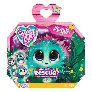 Scruff-a-Luvs-639JUN-Mystery-Rescue-Pet