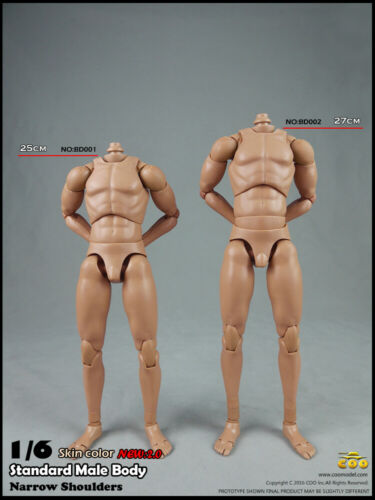 1//6 COOMODEL Muscular Male Body EXTRA TALL For Hot Toys Head Modle Toy