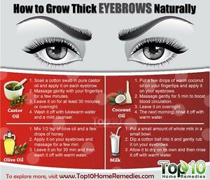 58d85455ee3 100% Pure Organic Castor Oil For Eyelashes and Eyebrows Growth 2oz ...