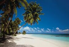 Wall Mural MALEDIVES photo Wallpaper Large size wall art. Beach palm and sea