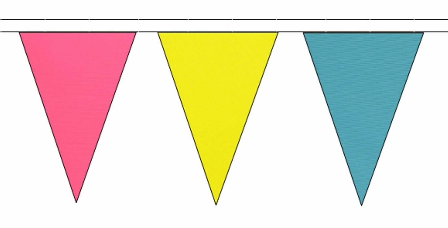 Pansexual Pride Flag Colours Triangular Flag Bunting - 50m with 120 Flags