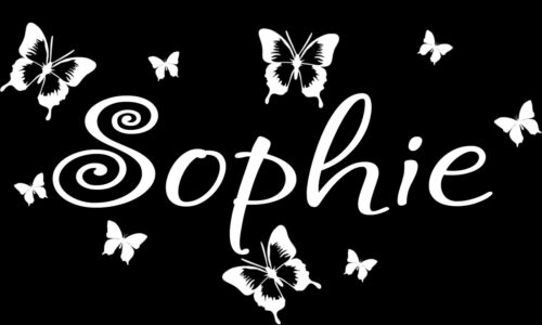 Personalized Butterflies Written Name removable vinyl wall decal