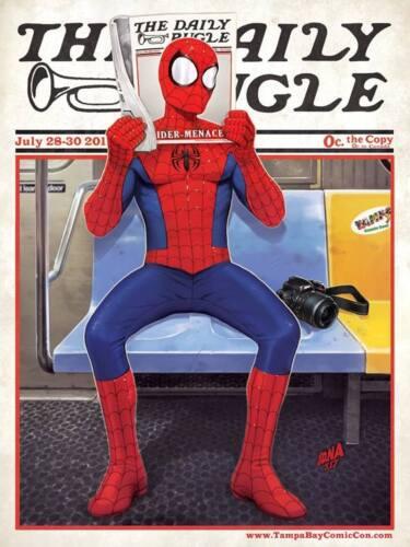 "*SIGNED* DAVID NAKAYAMA SPIDER-MAN VARIANT COVER 18/"" X 24/"" RENDER TBCC POSTER"