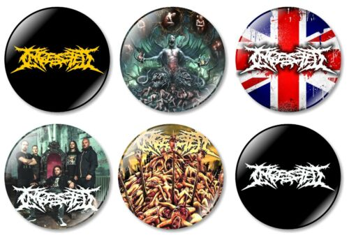 6 x Ingested 32mm BUTTON PIN BADGES Brutal Death Metal Slam Kings Above Human