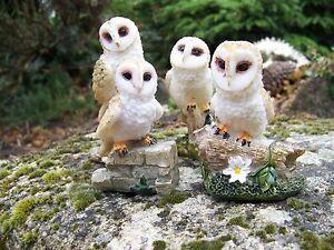 Mo0501 Famille Figurine Statuette Statue Quatre Chouette Hibou Kls1xmp1-07224829-976720832