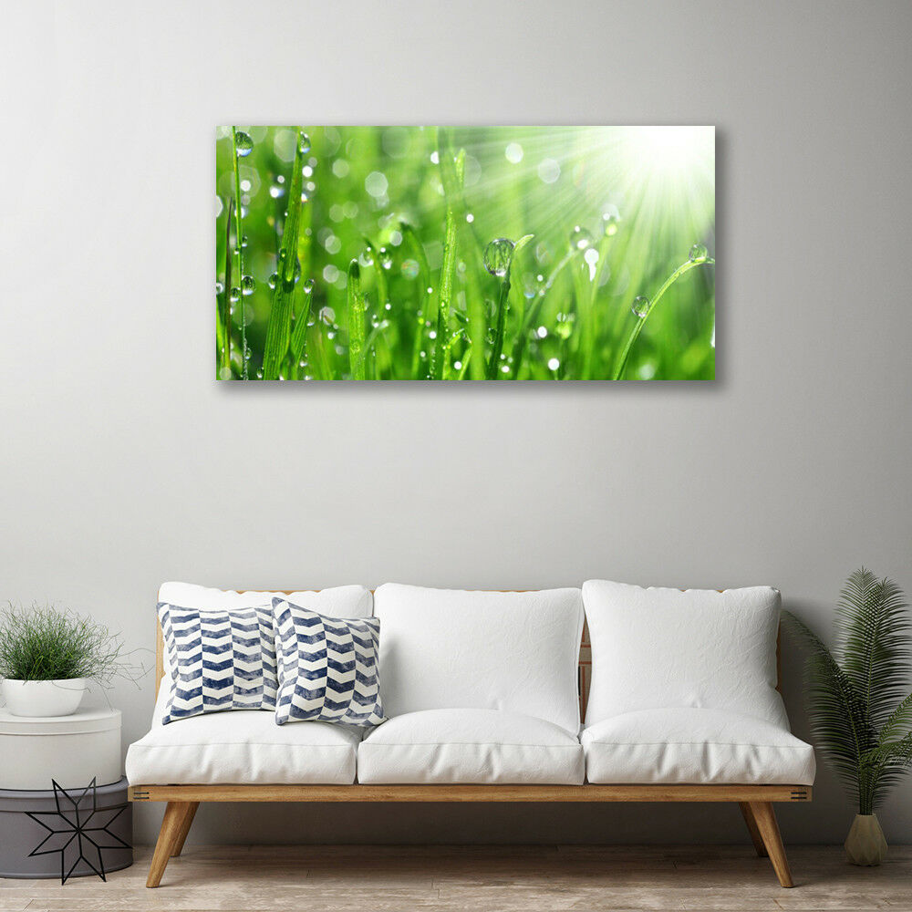 Canvas print Wall Wall Wall art on 100x50 Image Picture Grass Nature b777cd