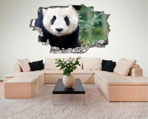 Panda Bär Tier Wildnis Wandtattoo Wandsticker Wandaufkleber C0176