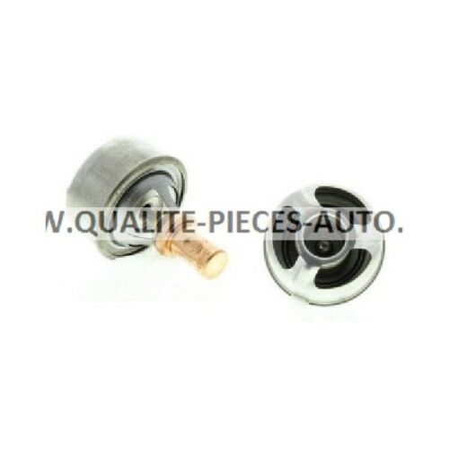Renault 4 5 6 11 15 19 21 Super 5 Thermostat d Eau