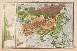 1942 Map Asia Vegetation Mountain Heights Himalayas India China