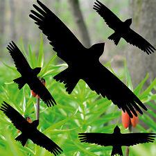Set Greif Vogel Aufkleber Fenster Scheiben Vogelschreck Vogelschutz Vogelabwehr