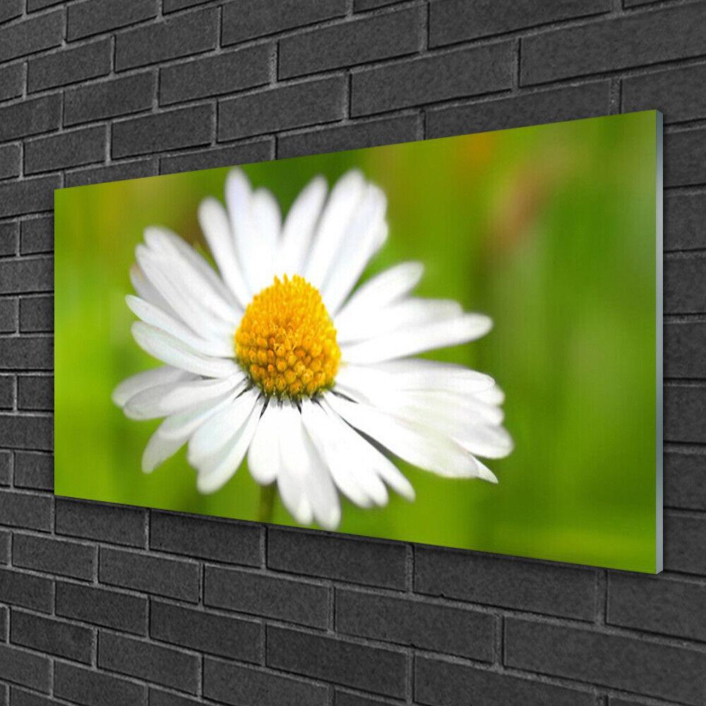 Tableau sur verre Image Impression 100x50 Floral Marguerite