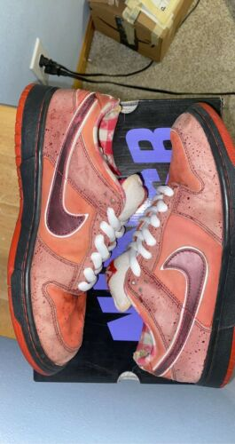 Size 9.5 - Nike SB Dunk Low Premium Red Lobster