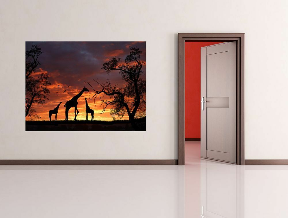Fototapete - Giraffen im Sonnenuntergang