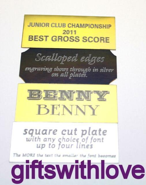 Engraved name plate plaque trophy 90mm x 25mm - Free Engraving