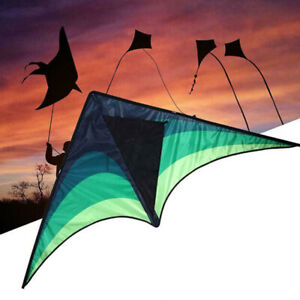 Large-delta-kite-for-kids-and-adults-single-line-easy-to-fly-kite-handle-ZBNV