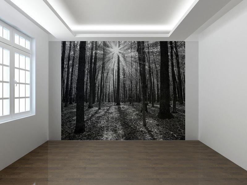 Herbst Wald Bäume Schwarz und Weiß Foto Wandtapete Wandgemälde (22990406)