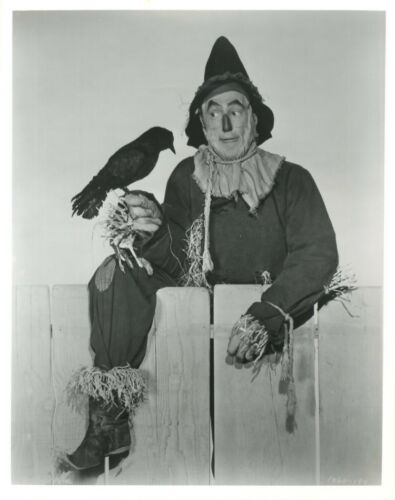 Ray Bolger as the Scarecrow B/&W Glossy Photo WIZARD OF OZ 8x10 In