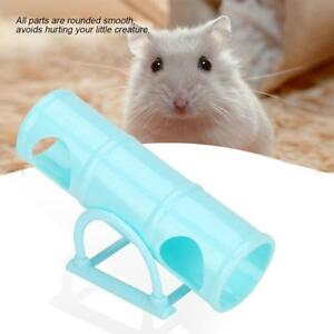 hamster tube com