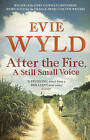 After the Fire, A Still Small Voice by Evie Wyld (Paperback, 2010)