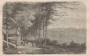 C1358 France - La Nouvelle Feuillée Du Val D'ayol - Xilografia - 1867 Engraving