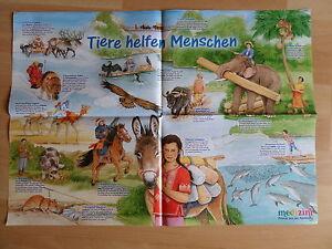 59x41-Poster-Tiere-helfen-Menschen-Delfine-PFERD-Hund-Esel-KINDER-Medizini-215