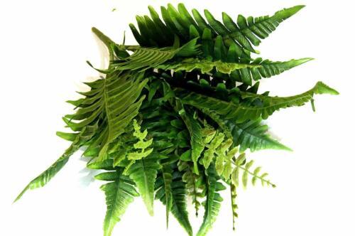 Busch Boston künstlich Waldfarn Kunstpflanze Z090 Farnbusch Blätter Grün Farn