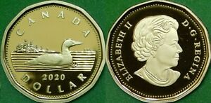 2020-Canada-Loonie-Graded-as-Proof-From-Original-Set